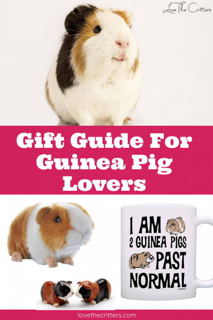 Gift guide for guinea pig lovers and owners. Gift ideas for animal lovers for birthdays, Mother's day, Father's day, Christmas, Valentines Day, or any other holiday! Unique, awesome, funny gift ideas #guineapigs #gifts